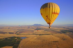 Balloon over the Winelands of the Cape